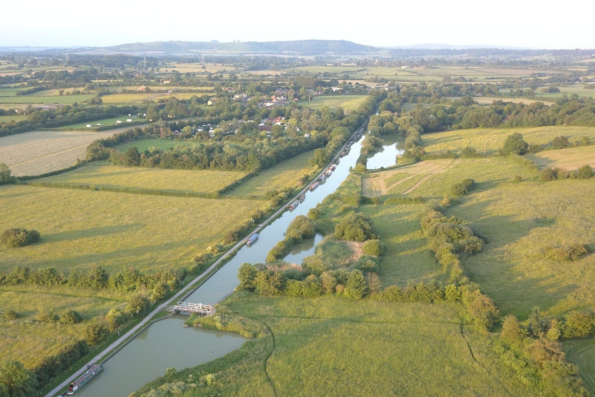 Fennec-Fox-at-Sells-Green-swing-bridge